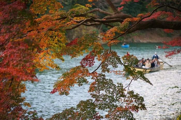 嵐山公園(中之島地区)は、阪急電鉄嵐山駅から渡月橋方面に向かう途中に位置する桂川の中州の園です。嵐山公園からは、嵐山地区を悠然と流れる桂川と、鮮やかに彩った樹々を見渡すことができます。