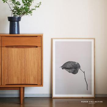 """壁に飾ったり、シェルフや床に立てかけたり。お気に入りのポスターひとつで空間の印象は変えられます。  デンマークのポスターブランド「Paper Collective(ペーパーコレクティブ)」から届いた、その名も「SABI(サビ)」という作品。日本に古くからある美意識""""侘び・寂び""""を彷彿とさせるモノクロームの植物の姿に、ついつい惹きこまれます。これなら、洋室にも和室にも似合いそう。"""