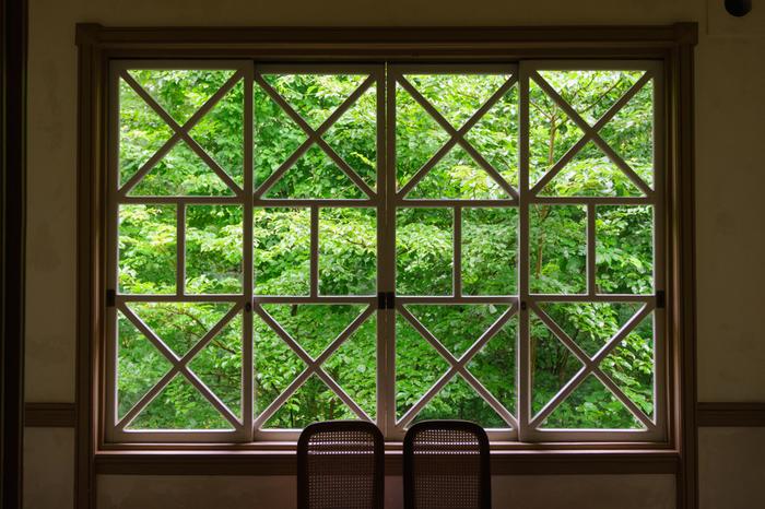 外から見る重厚な建物も素敵ですが、中から眺める外の緑も素敵。