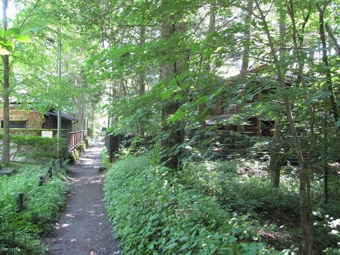周囲も緑にあふれていて、散策するだけでリフレッシュできそう。小道を挟んだ向かい側にはこの後紹介する「Cafe 涼の音」があり、こちらもおすすめです。