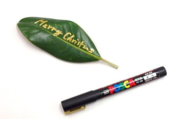 4.用意しておいたタイサンボクの葉にペンでメッセージを書けば、完成です。