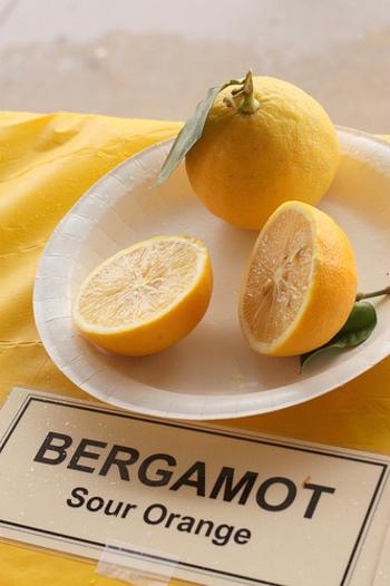 紅茶の香りとしても人気の、ベルガモット。柑橘系の甘すぎない香りで、気分が落ち込みがちの時や、食欲がわかない時にもおすすめです。