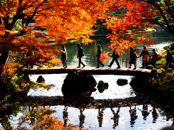 2枚の大岩でできた渡月橋は必見♪紅葉の時期には特に幻想的な眺めに。