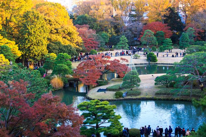 巣鴨にある「六義園」は、江戸時代を代表する大名庭園です。和歌の趣味を反映した繊細さが美しい、回遊式築山泉水庭園となっています。