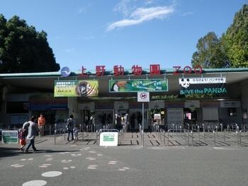 上野動物園が開園したのは1882年、日本で最初の動物園なんですよ♪正式名称は「東京都恩賜*上野動物園」。  *ここでの恩賜(おんし)というのは皇室に賜ったもののことをいうそうです。