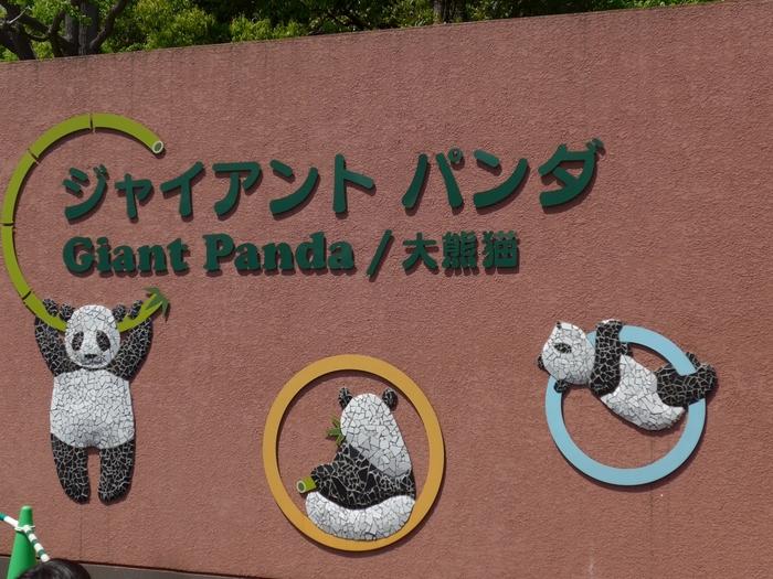 上野動物園には東館と西館があり、東館の表門から入園して向かった右手に「パンダ舎」があります。タイルで描かれたかわいいパンダたちがお出迎え!
