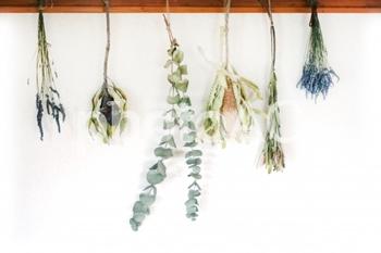 美しいお花やグリーンを存分に楽しんだ後は、こんな風にクリップやフックを使って1本ずつ吊るしてみましょう。まとめて吊るしても良いですが、乾燥時間が少々長くなります。