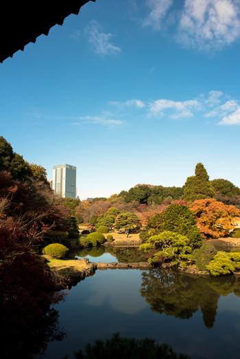 落ち着いた雰囲気が人気の「新宿御苑」は、大人にぴったりのスポット。広い園内には日本庭園をはじめ、フランス、イギリス風の庭園があります。