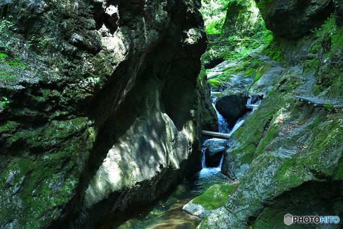 川のせせらぎが聞こえる、森林浴に最適なスポットも。 美しい渓谷の中、心穏やかになれそうです。