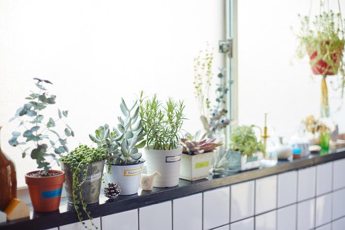ロール状のマスキングテープと違って切ってあるから、気軽に使えるのもうれしい所。こんな風に植木鉢に貼れば、忘れがちな植物の名前も覚えらえそう。