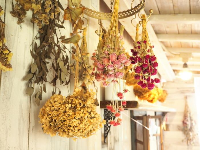 お花選びが済んだら、茎をちょうど良い長さにカットして、輪ゴムや紐を巻いて吊るします。カビなどを防ぐために、日陰の風通しの良い場所を選ぶのがポイントです。何本かまとめて吊るすのも良いですが、1本ずつバラバラに吊るせば、乾燥が早くなります。