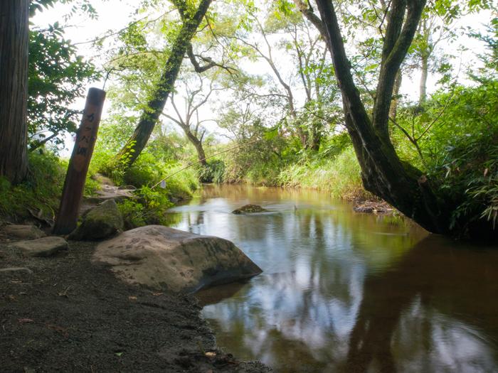 遠野駅から車で約10分。 ここを流れる小川には、カッパが住んでいたという伝説があるのだそう。 こんもりと草木が生い茂る中、澄んだ水がサラサラ流れる異空間。 今も昔のままの風景が広がります。