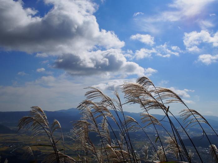 「どっどど どどうど どどうど どどう・・・」不思議な歌ではじまる中編小説。ある秋の風の強い日、小さな小学校に三郎が転校してきます。その不思議な少年の様子に、クラスメートたちは彼を地域に伝わる風の神の子『風の又三郎』ではないかと思います。  小さな田舎の小学校の一コマを描いた、静かでありながらも風が吹くような心地よい作品です。