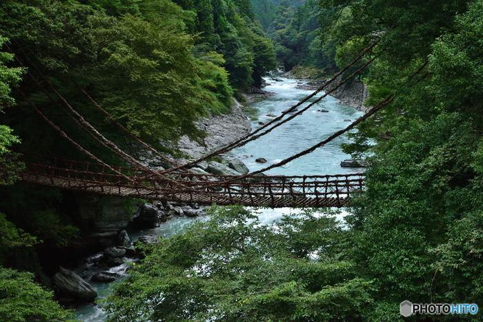 """平家一族の哀話を秘める、秘境""""祖谷""""にあるつり橋「かずら橋」も見所のひとつ。 追手が迫ったときすぐ切り落とせるようにとシラクチカズラという植物で作られたというこの吊り橋は、不安定でかなり揺れるのでスリル満点なのだそう..."""