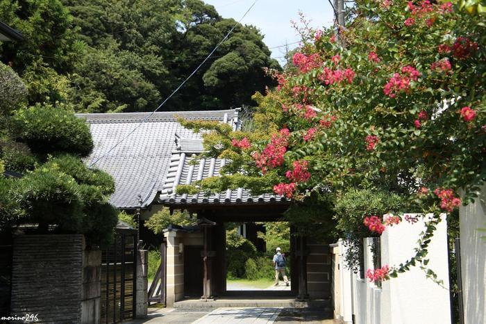 英勝寺から徒歩5分ほど。浄光明寺は1251年に創建され、国の史跡にも指定されているお寺です。こちらに収蔵されている阿弥陀三尊像は、鎌倉彫刻の傑作としても知られ、国の指定重要文化財にもなっています。