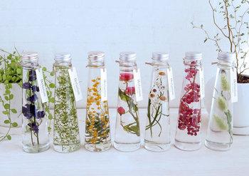 植物を混ぜず、それぞれ個別にボトルに詰めていくのも、標本的な美しさがありますね。ずらりと並べれば、壮観。ハーバリウムに囲まれた暮らしは、想像以上に素敵です♪