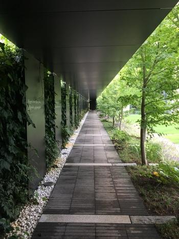 こちらはミュージアムとレストランをつなぐその名も「知恵の小径」。