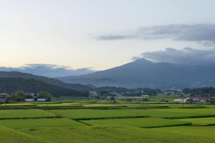 妻・智恵子と結婚前から彼女の死後にわたって綴られた詩と短歌、散文が収められています。心の病で智恵子がこわれていくさま、心の病に侵されてもなお彼女を愛する様子が胸にせまる名詩集です。  ※写真は、智恵子が生涯恋い焦がれた、智恵子の故郷、福島の安達太良山。