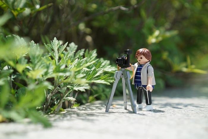 写真を上手に撮る基本は、とにかくピントをきちんと合わせるということが大切です。一眼レフカメラならこんな風にピントをきちんと合わせて周りをぼかし、雰囲気のある写真を撮ることもできます。