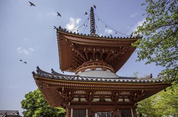 平安時代に創建された、埼玉を代表する由緒ある寺院。江戸時代には幕府のフィクサーとも言われた天海大僧正が住職をつとめ、本堂の隣には徳川家光や春日局に縁の部屋が移築されています。