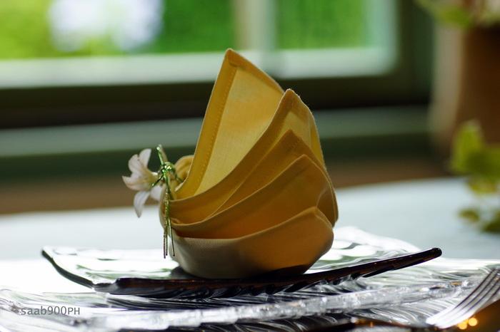 折り方を変えれば同じナプキンでも印象が変わります。ナプキンを何種類も用意するのは大変ですが、折り方を何通りか覚えれば、ナプキンが1種類しかなくてもパーティーや食事会ごとに違う雰囲気を演出できますね。 パーティーの目的やお客様によって折り方を変えて、ナプキンでもおもてなしの心をぜひ表現してみてください。