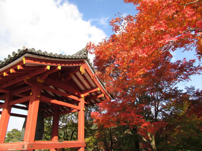 宇治川畔に佇む平等院は、平安時代に栄華を極めた名門貴族、藤原氏ゆかりの寺院で1052年に創建されたものです。