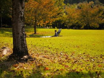 暑すぎず、寒すぎず、スギやヒノキといった花粉もない秋は外で過ごすのに快適な季節。熱中症の心配も少ないため、バドミントンやフリスビーなどで遊ぶのもいいですね♪