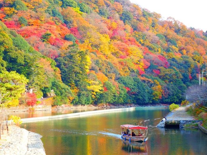 宇治川は、琵琶湖に端を発し、大阪湾へ注ぎ出る一級河川、淀川の一部です。宇治市内を悠然と流れる宇治川畔は、晩秋になると樹々が鮮やかに紅葉し、風光明媚な景色が広がります。
