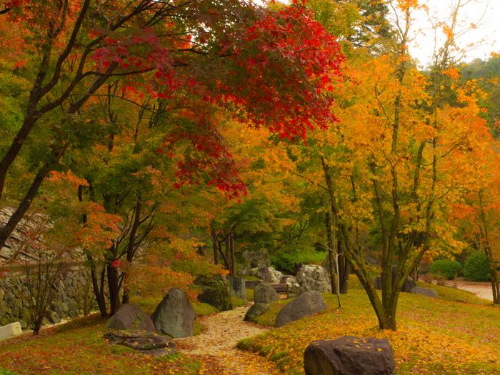 深紅、朱色、橙色、黄色に染まった樹々、青苔に舞い落ちた散紅葉、深山幽谷とした境内が織りなす景色は、まるで一枚の絵画のようです。