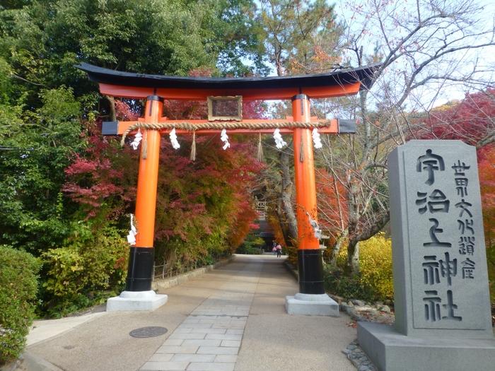 世界遺産・宇治上神社は、宇治川の東岸に鎮座する神社です。平等院からも近く、歩いて行くことができる距離なので、平等院と併せて参拝してみるのもおすすめです。