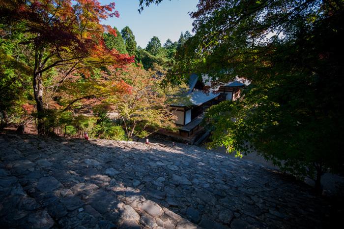 824年に創建された神護寺は、国宝の薬師如来像を御本尊とする真言宗の寺院です。清滝川に架かる高雄橋から山門までは、約400段もの険しい石段が続いています。