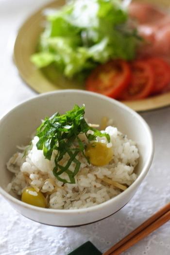 カルシウムたっぷりのちりめんじゃこの炊き込みご飯。その他にも生姜や秋の味覚・銀杏も入ってるので、味わいも豊か。お好みで梅干しや百合根などを入れても◎