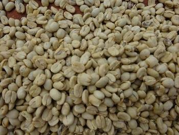 グアテマラのコーヒーの特徴は、甘い香りとコク。酸味については、上品なものから少し強めなものまで、さまざま。