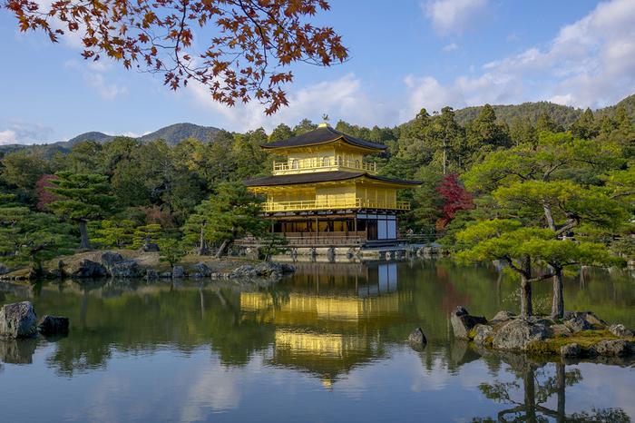 「金閣」として知られている舎利殿には建物全体に金箔が貼られており、訪れる人に忘れることができない強烈な印象を与えてくれます。深紅に染まったモミジ、静かな水面の鏡湖池、舎利殿が織りなす景色は、まるで一枚の絵画のようです。