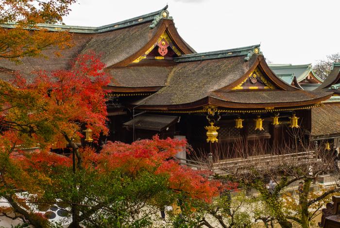 観光客のほか、大勢の受験生たちでにぎわう北野天満宮は、学問の神様・菅原道真を祀る神社です。947年に創建された北野天満宮の敷地は広く、境内には、紅葉の名所として知られている「もみじ苑」があります。もみじ苑にある展望台からは、秋色に染まった国宝・本殿を臨むことができます。