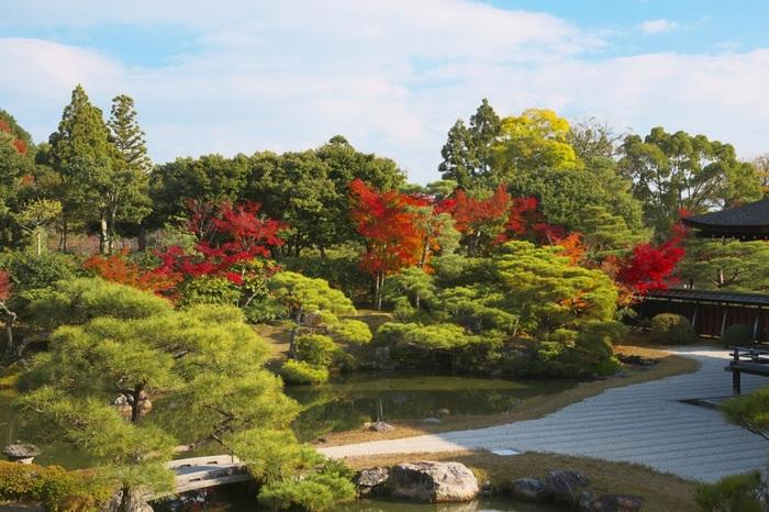 御殿北庭の美しさは、傑出しています。深紅に染まったモミジが北庭の美しさを引き立て、北庭を眺めていると、まるで浮世絵そのものが眼前に現れたかのような錯覚を感じます。