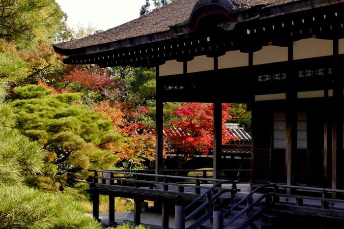 旧御室御所である仁和寺では、建物を宮殿として使っていた頃の面影が色濃く残されています。平安時代の貴族の屋敷を彷彿とさせる渡殿からは、秋色に染まった美しい庭園を見渡すことができます。