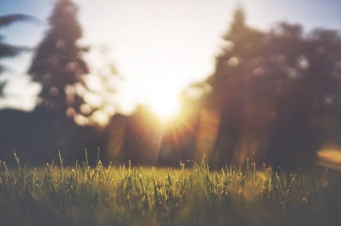 朝、太陽の光を浴びることで、体内時計をリセットすることができ、心穏やかな気持ちになります。すっきりと気持ちよく目覚めることができます。