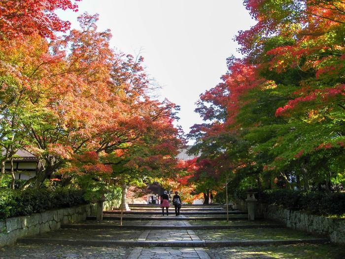 真如堂(しんにょどう)の通称で親しまれている真正極楽寺は、984年に創建された天台宗の寺院です。普段は静かな真正極楽寺ですが、洛東エリア有数の紅葉名所として知られており、晩秋になると大勢の参拝客で賑わいます。