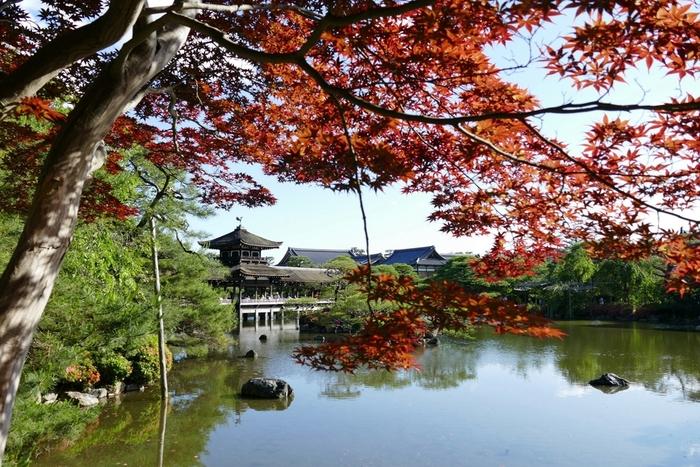 国の名勝に指定されている平安神宮神苑での紅葉の美しさは格別です。深紅に染まったモミジが、水墨画から抜け出したかのような池泉回遊式庭園の美しい景色に華を添えています。