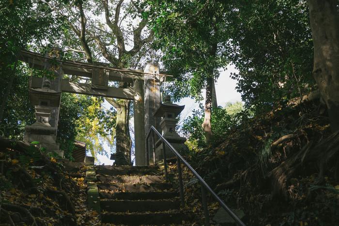 写真や古いぬいぐるみや人形、遺品など、捨てることがためらわれるものは、神社へ行ってお焚き上げをしてもらうのも良い方法です。