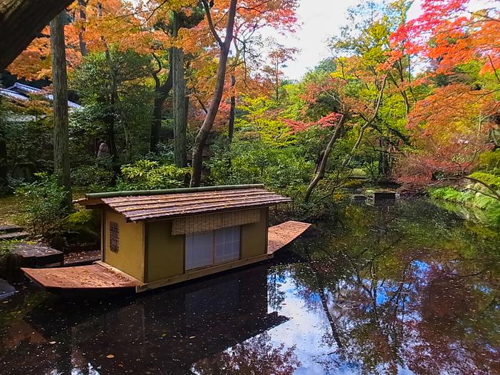 根津美術館は見事な庭園も見もの。四季折々の美しい表情を見せてくれます。もちろん、秋には素晴らしい紅葉が楽しめます。池に浮かぶ落ち葉もまるでアートのようです。