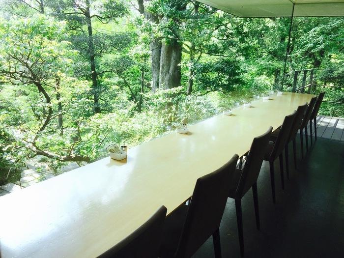 根津美術館のカフェ「NEZUCAFÉ」は全面ガラス張りで、景色を楽しめるカウンター席が特に人気です。都会のど真ん中でこれだけの絶景カフェはなかなかありませんね。