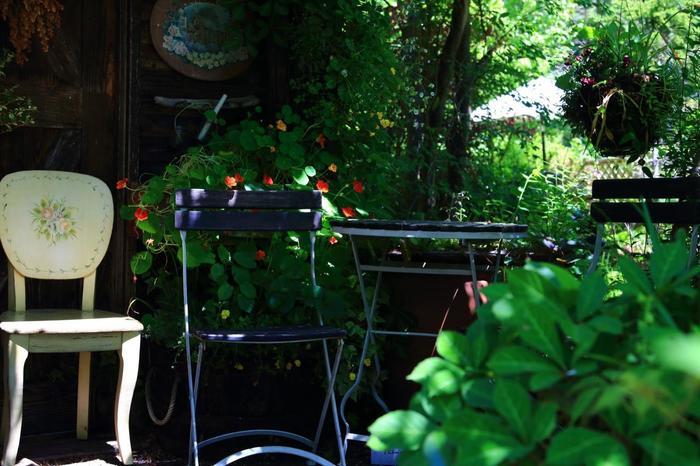 ボランティアの人たちが愛情込めて作るターシャの庭。 ここで売られるグッズもターシャの庭を守って行くために使われています。
