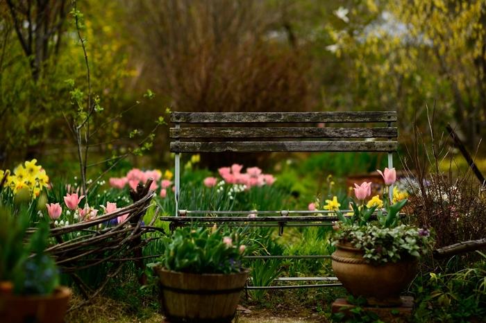 ターシャの庭をじっくりゆっくり堪能してください。写真のスポットもたくさんありますよ。