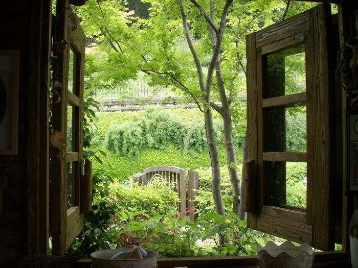 窓からターシャの庭を撮るなど、みなさん結構思い思いに写真を撮っています。