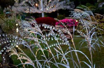 仙石原高原と一緒に足を運びたいのが「箱根ガラスの森美術館」です。秋の期間は約20,000粒ものクリスタルガラスで作られたススキが楽しめます♪