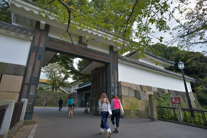 都会のオアシス的なスポット、皇居に隣接する「北の丸公園」。常時開放されており、近年はジョギングするひとも増え、多くのひとに親しまれている人気のエリアです。