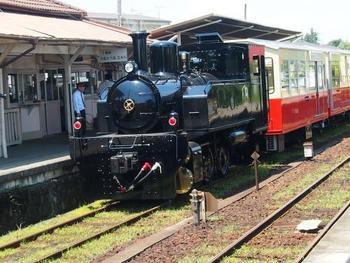 紅葉スポットとして人気の養老渓谷から上総牛久区間を走る小湊鉄道では、トロッコ列車で車窓を眺める鉄道旅が楽しめます。