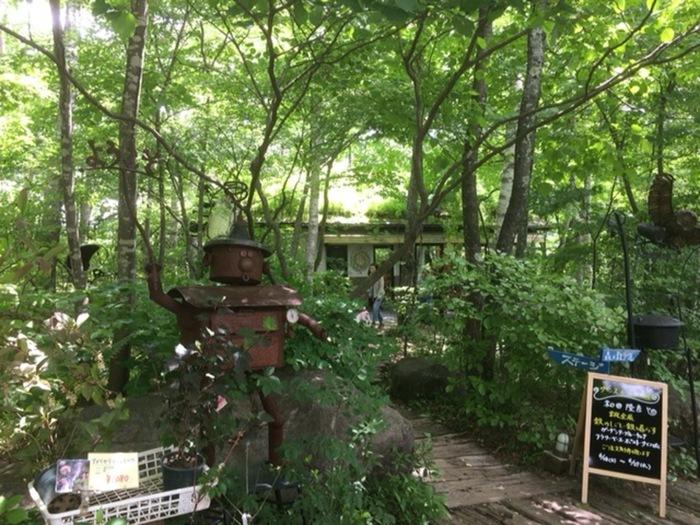 清里駅から車で10分ぐらい移動した森の中にたたずむ八ヶ岳倶楽部。俳優の柳生博さん一家が1976年に移住し、八ヶ岳の自然の魅力を多くの人に知ってもらいたいと1989年にオープンした複合施設です。